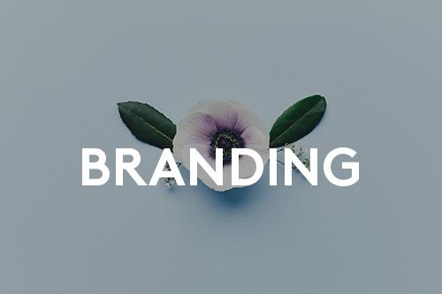 La marque passe aussi par le visuel. Ici on parle d'identité visuelle, de branding, etc.
